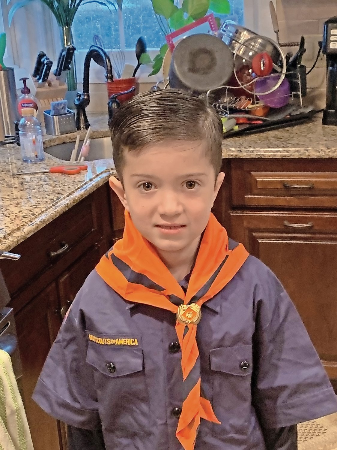 Daniel Accomando, 7, of Rockville Centre, saved his 4-year-old friend.