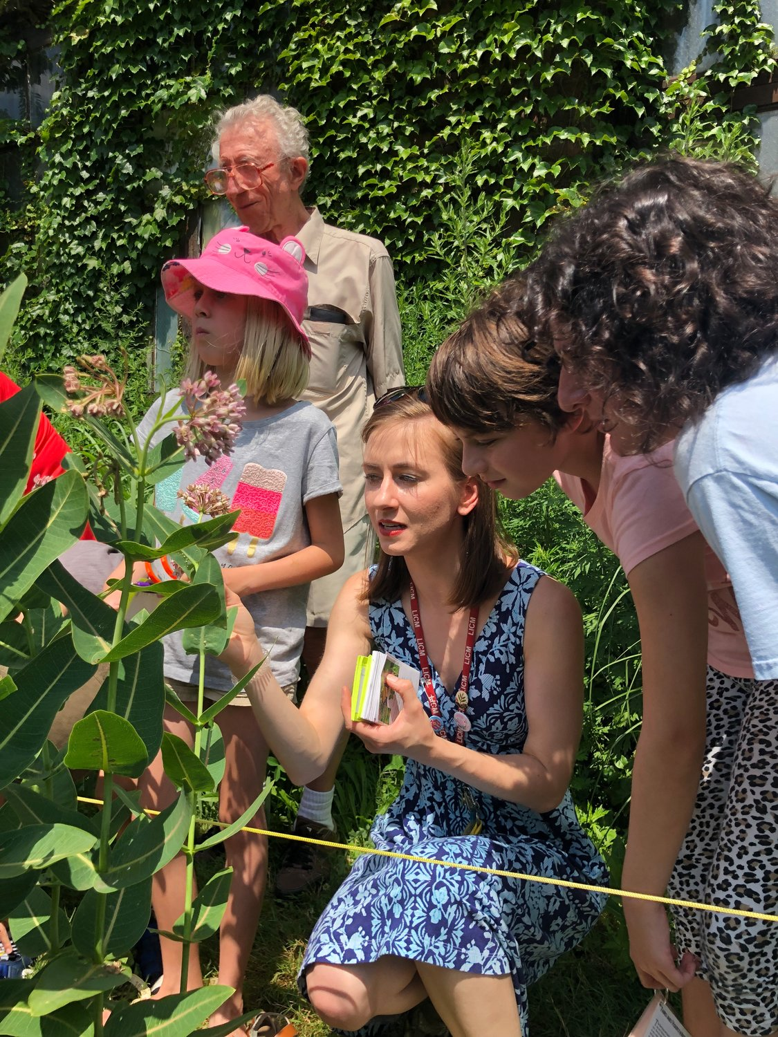 Families can study monarch butterflies in Long Island Children's Museum's Milkweed Garden on Friday afternoons.