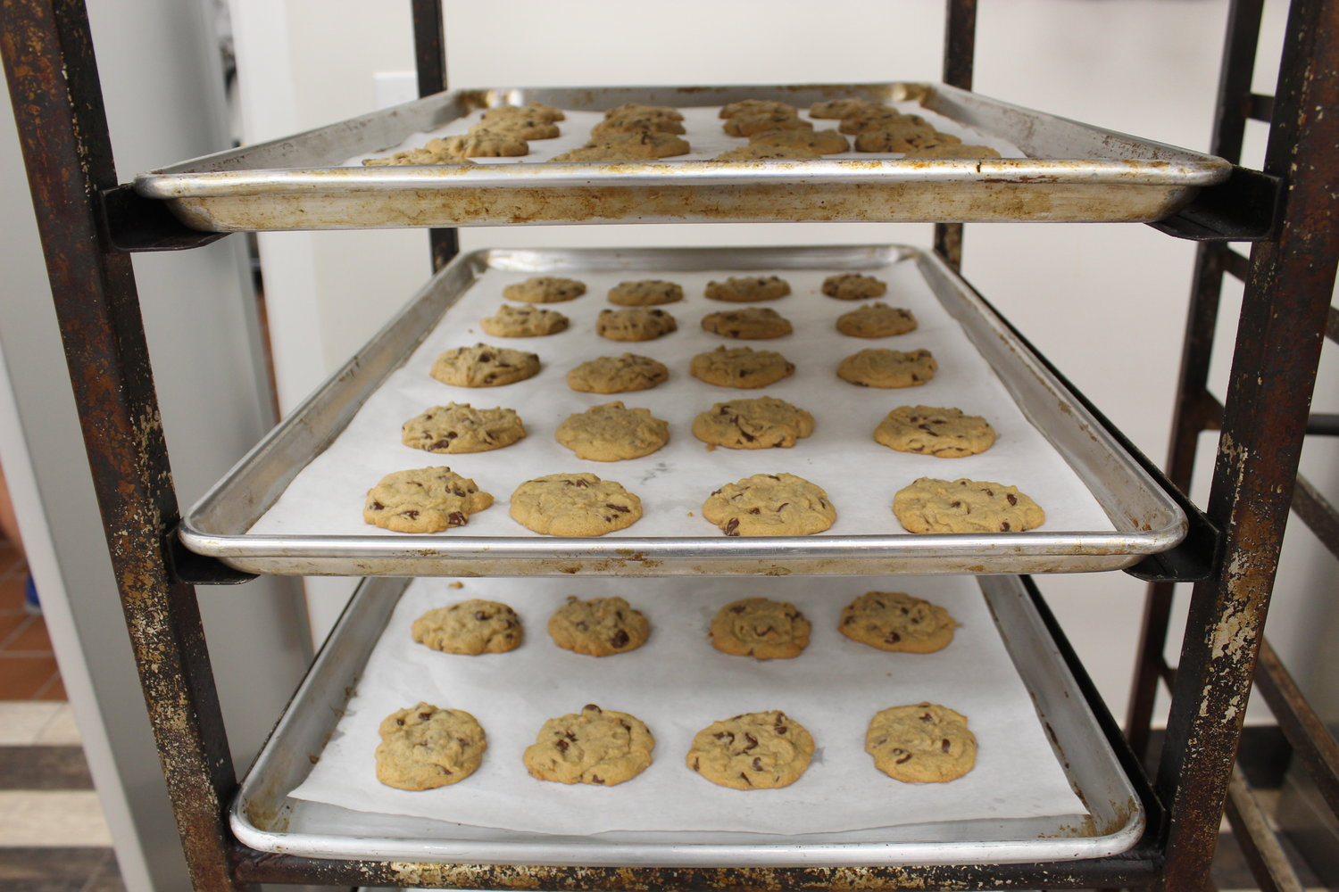 Sheet trays full of warm chocolate chip cookies, above, rested on a cooling rack.