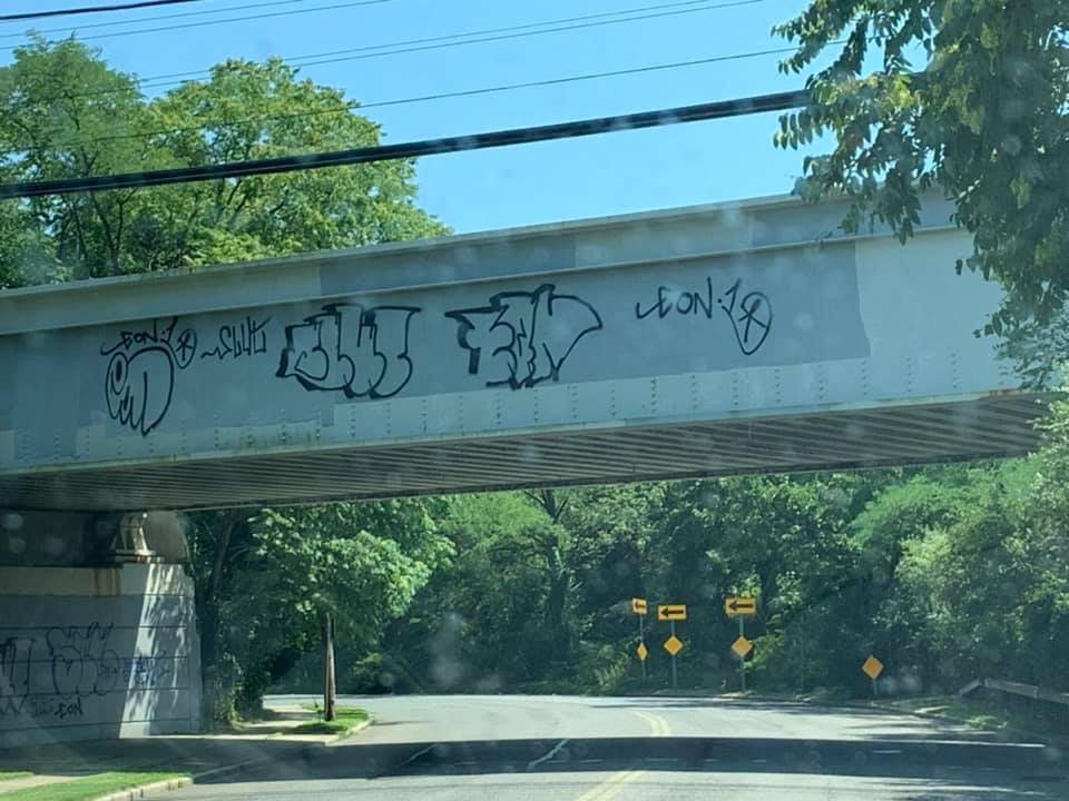 "Graffiti spotted in late July on various overpasses in the community have become an ""eyesore,"" according to locals."