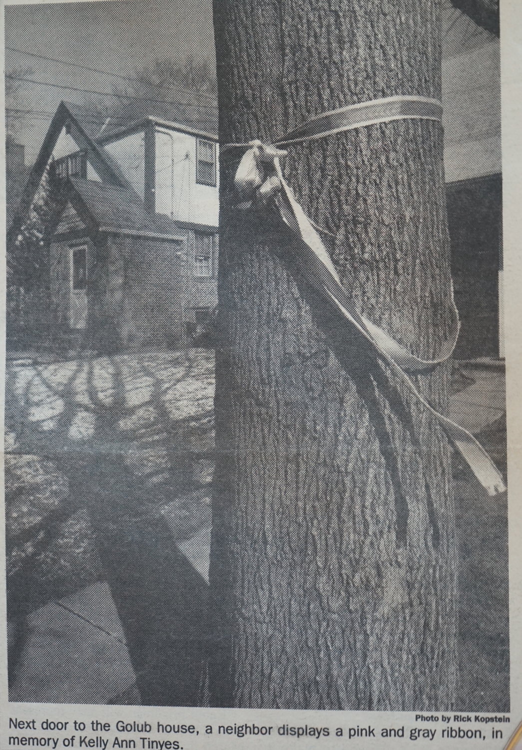 A photo from a March 1990 issue of the Nassau Herald. A pink and gray ribbon was tied to a tree neighboring the Golub house, in memory of Kelly Ann Tinyes.