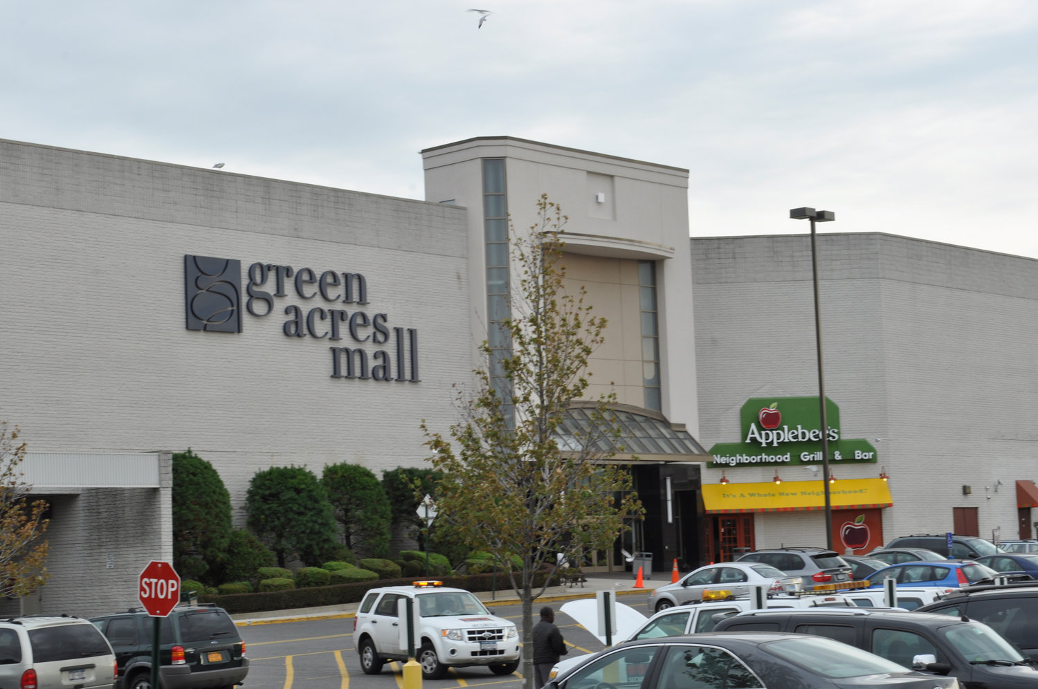 Fifth Precinct police officers reported that a Brooklyn man allegedly tried to steal an elderly woman's car and attacked Green Acres Mall security guards on Sept. 26.