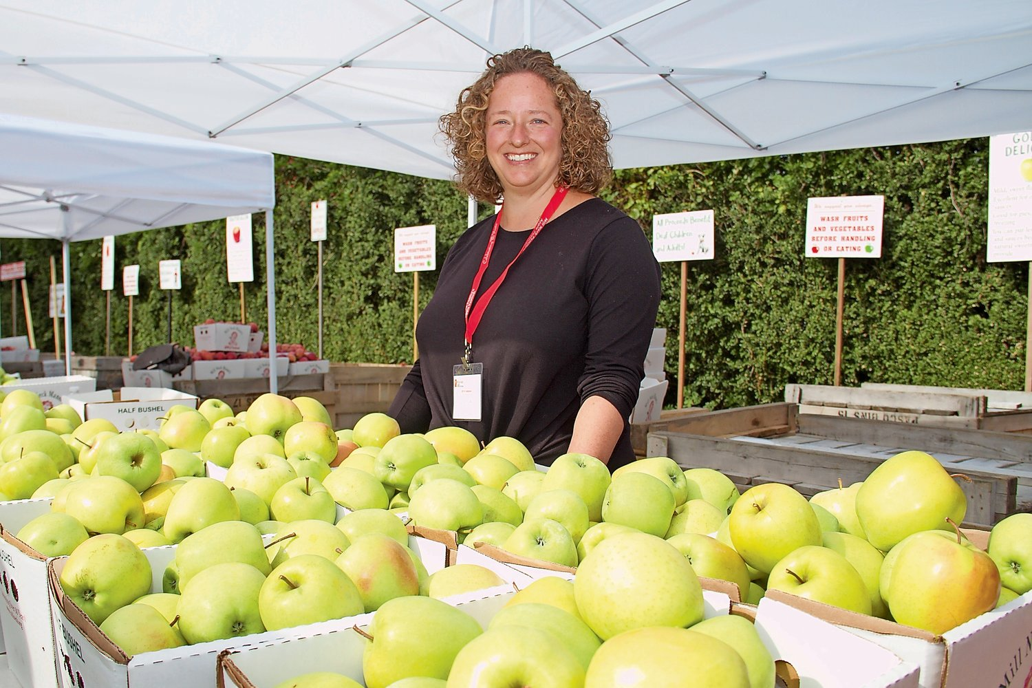 Jillian Terrana volunteered under the Golden Delicious apple tent at the Apple Festival.
