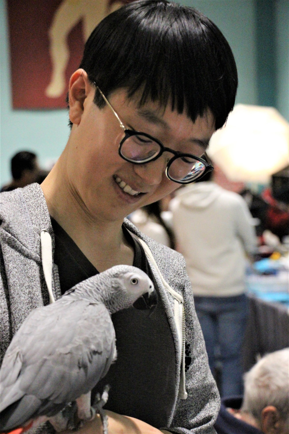 Dennis Wang was thinking about adding a new member to his family at the Long Island Parrot Society's annual Parrot Expo last Saturday.