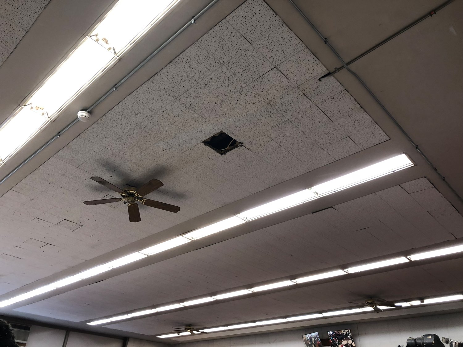 Broken and missing ceiling tiles can be found in all school buildings.