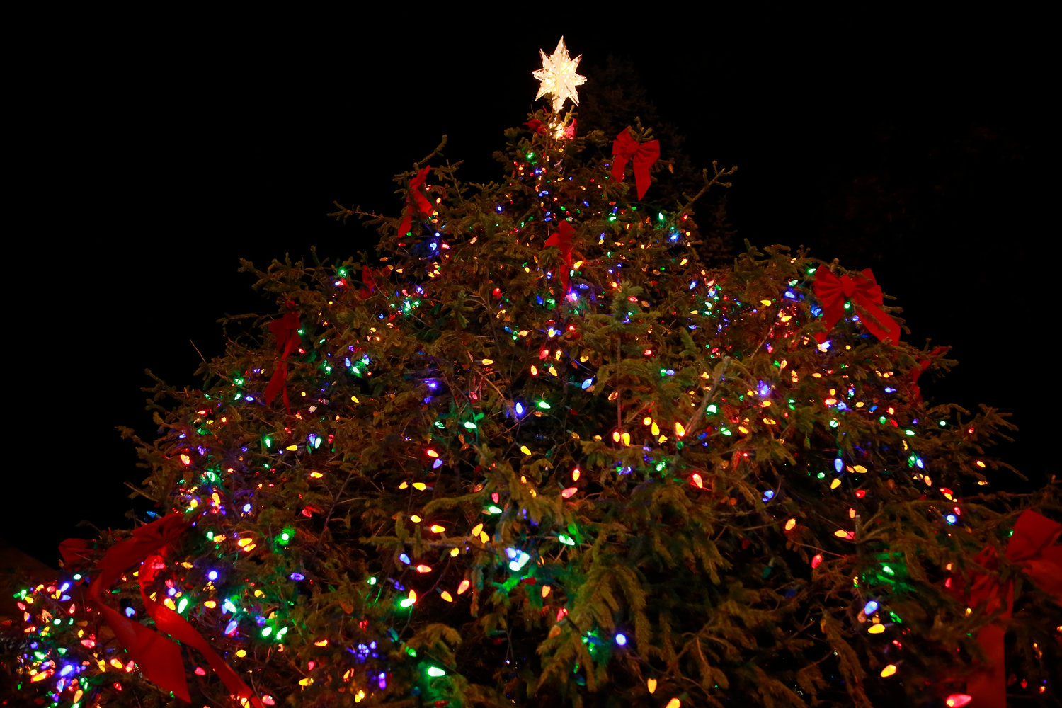 East Rockaway hosted its tree-lighting festivities on Atlantic Avenue on Dec. 6.