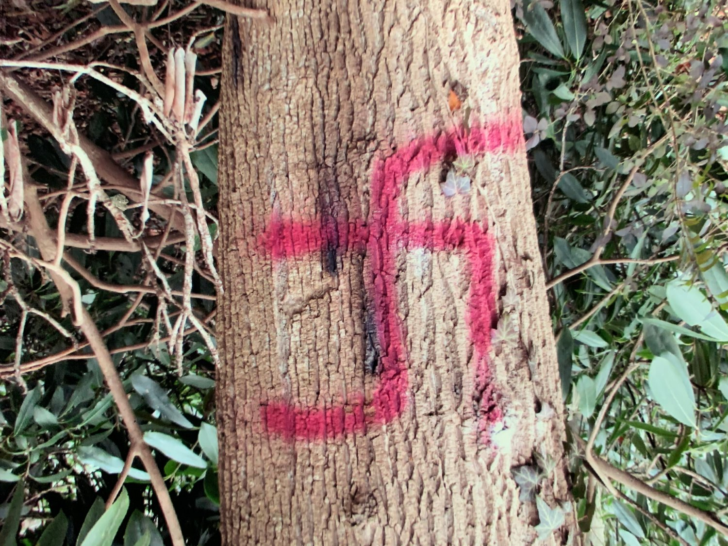 Swastikas were found at the Holocaust Memorial and Tolerance Center on Dec. 3, the second incident of such hate-related graffiti in recent weeks.