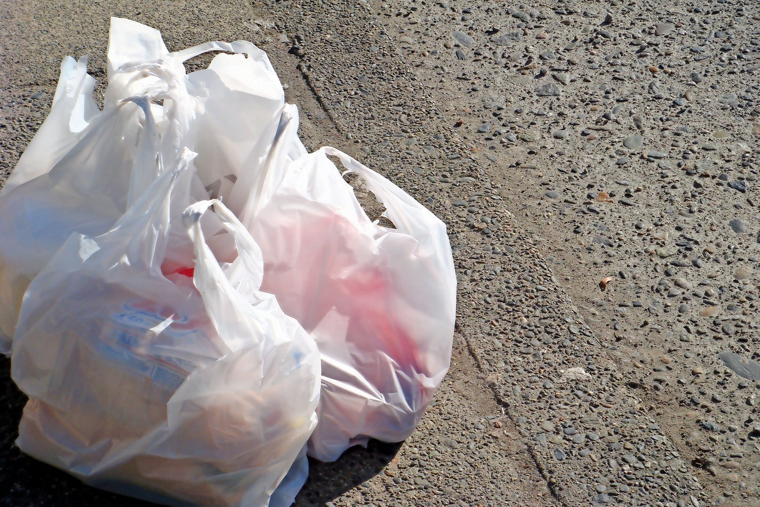 The state's ban on plastic bags goes into effect on March 1. Stores in the area such as Gourmet Glatt in Cedarhurst will provide reusable bags to customers.