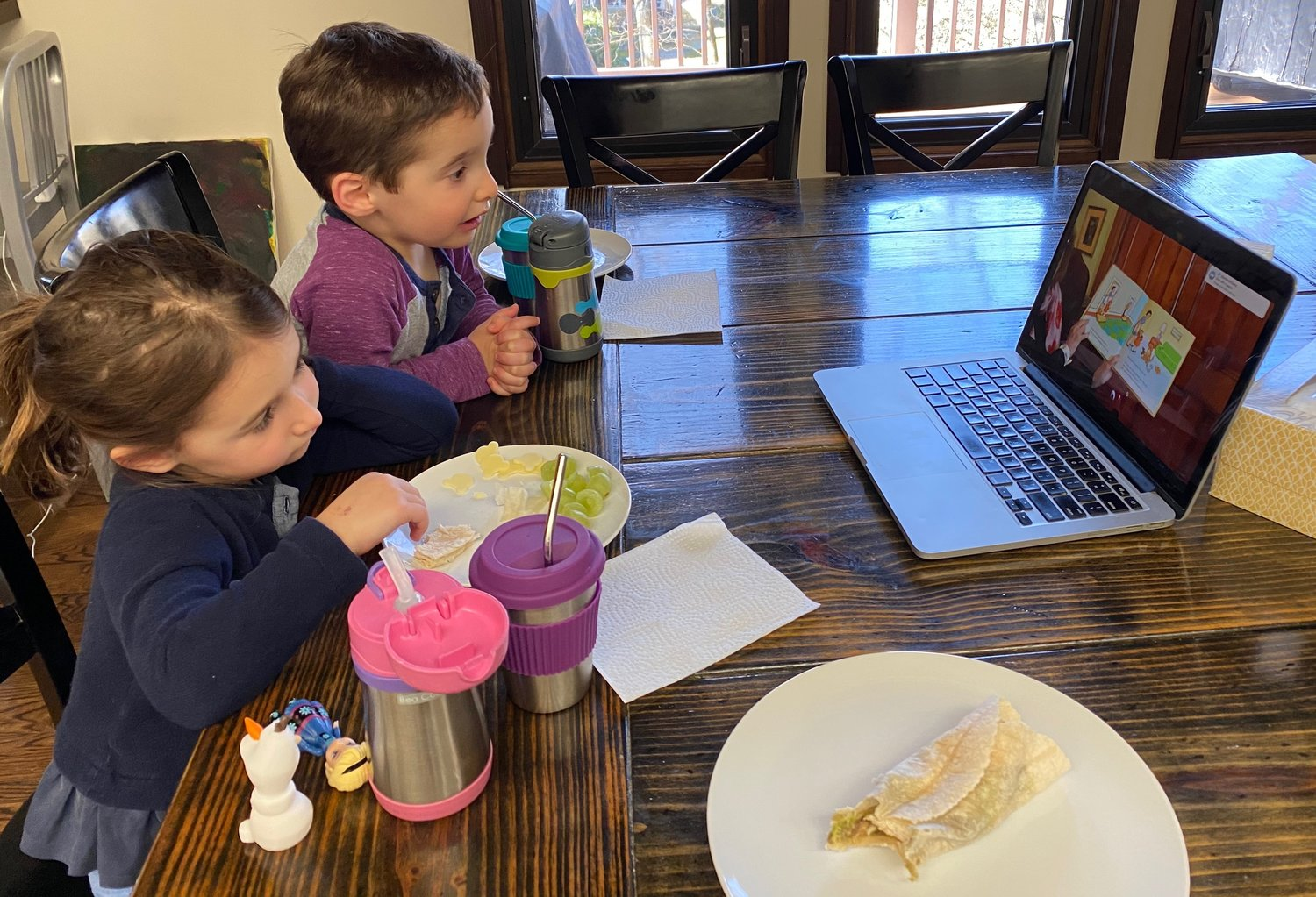Kids are now enjoying story time virtually. Above, Bea, 6, left, and Benjamin Cohen, 3, had story time with Ann DiPietro at home during the Sea Cliff Library's closure.