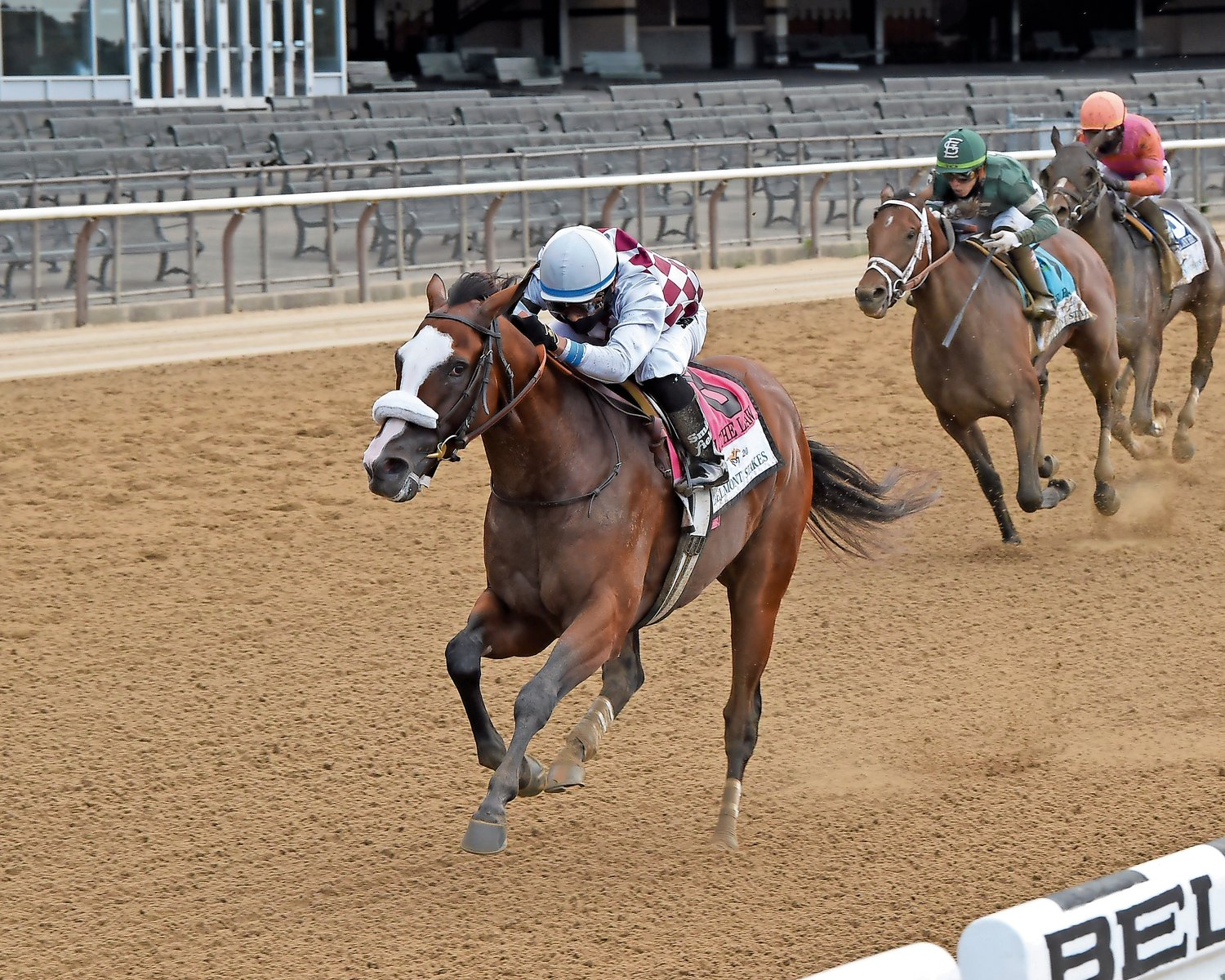 Tiz The Law crossed the finish line first at the Belmont Stakes on June 20, becoming the first New York-bred horse to win since 1882.