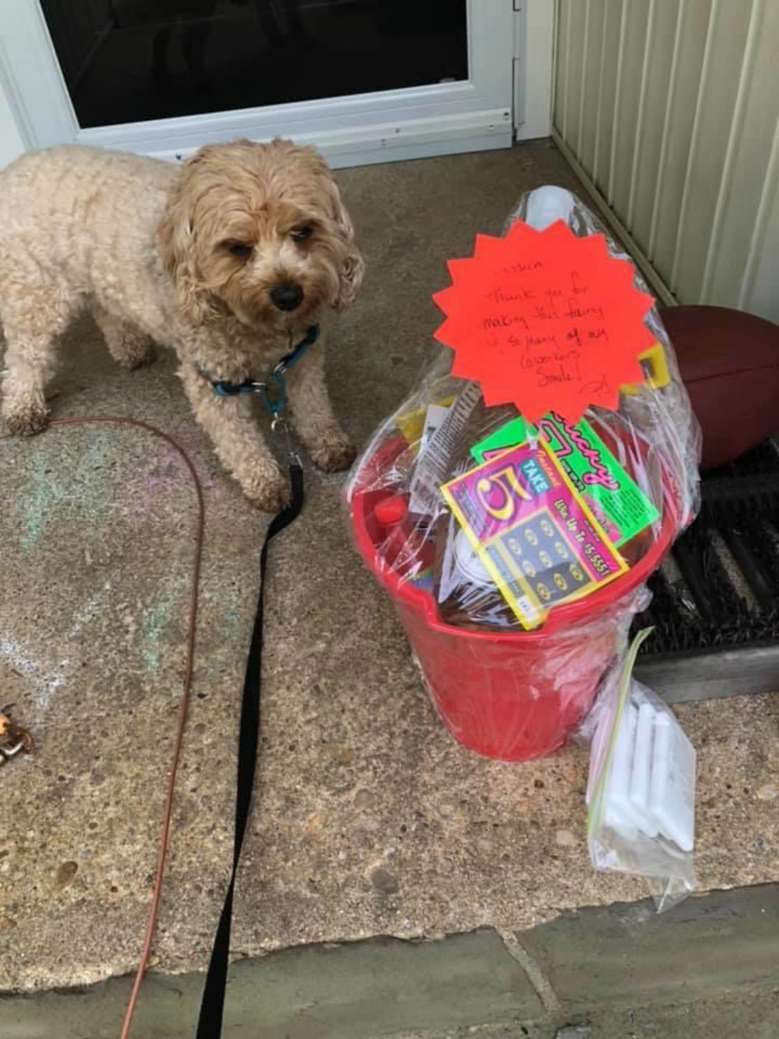 After walking her dog, Jessica Kaiser Baker, of Bayville, found this basket from the wine fairy group on her doorstep.
