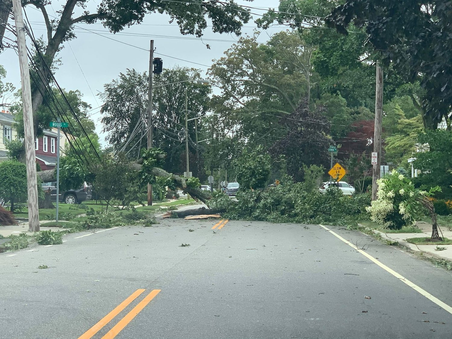 A fallen tree on Rockaway Avenue in Oceanside.