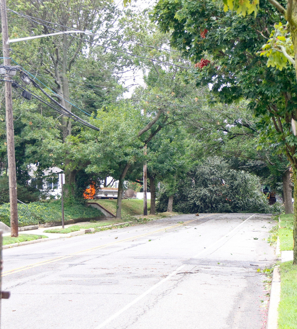 A tree blocked passage on Lakeview Avenue, near the corner of Brower Avenue, in Rockville Centre.