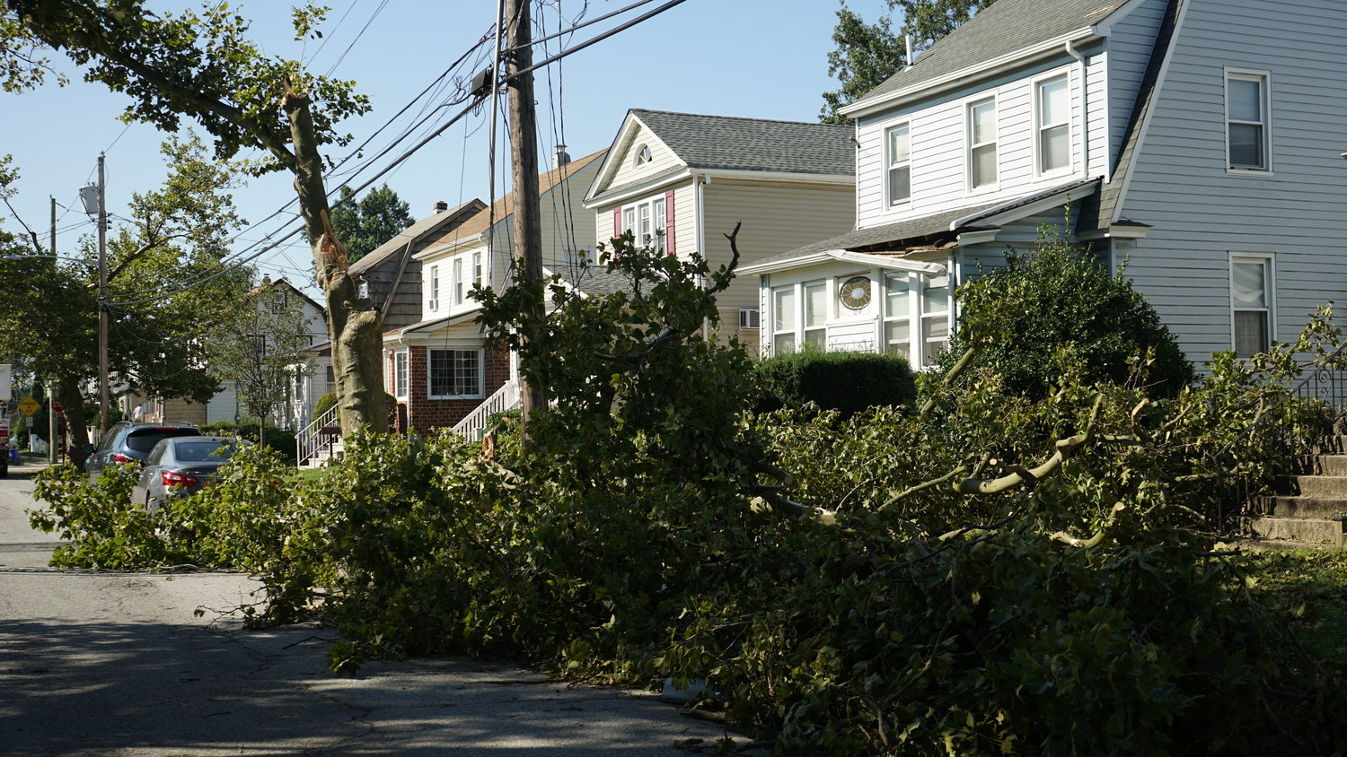 It was one of the harder hit areas in the neighborhood, with roughly half a dozen trees downed and power lines torn from multiple homes.