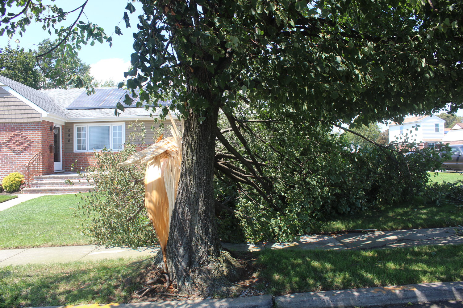 A tree fell in front of a house on Ridge Road in Elmont.