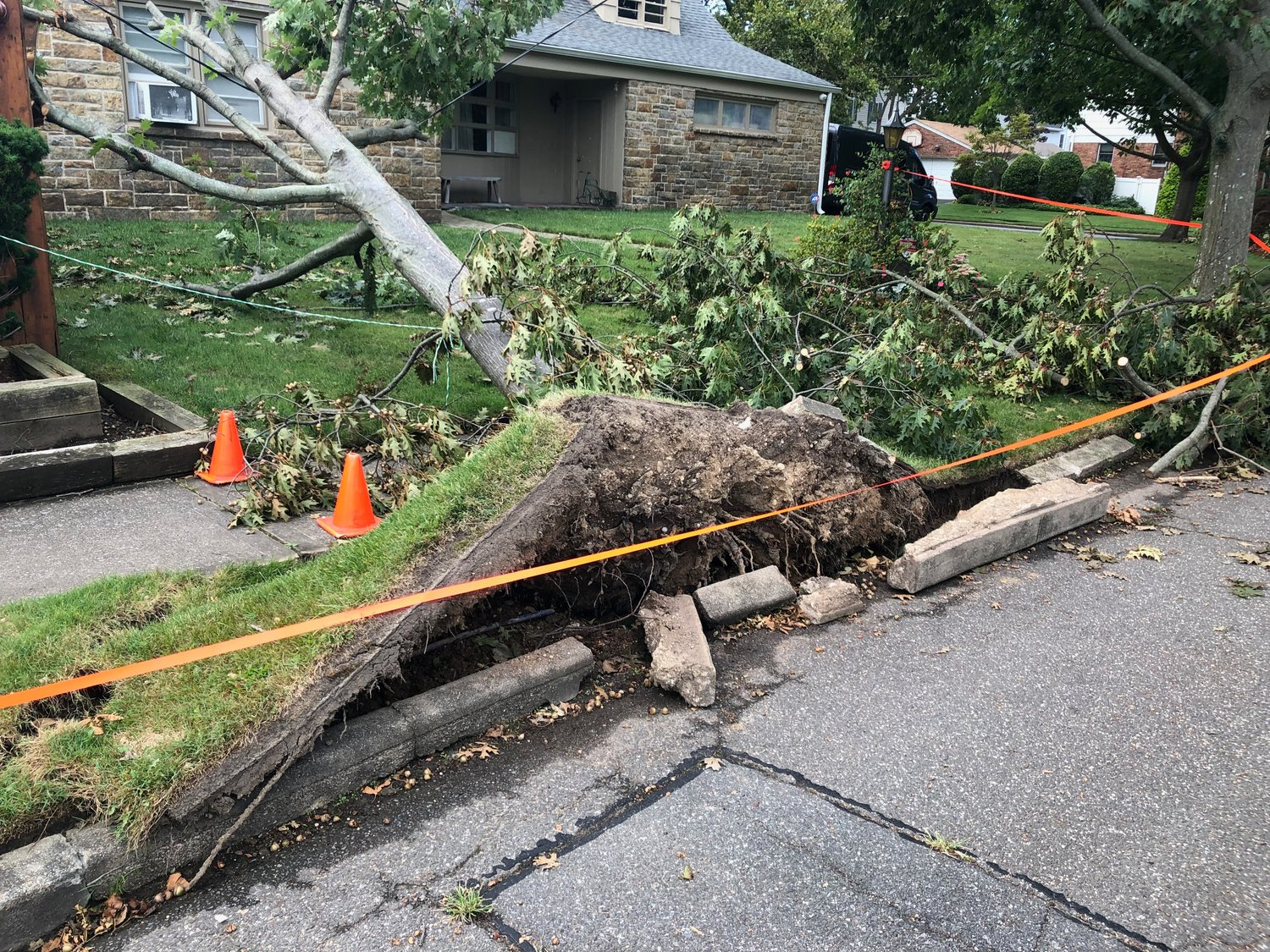 Although there was no major storm damage on Spencer Avenue in Lynbrook, on Waverly Avenue a tree was uprooted by tropical storm Isaias.