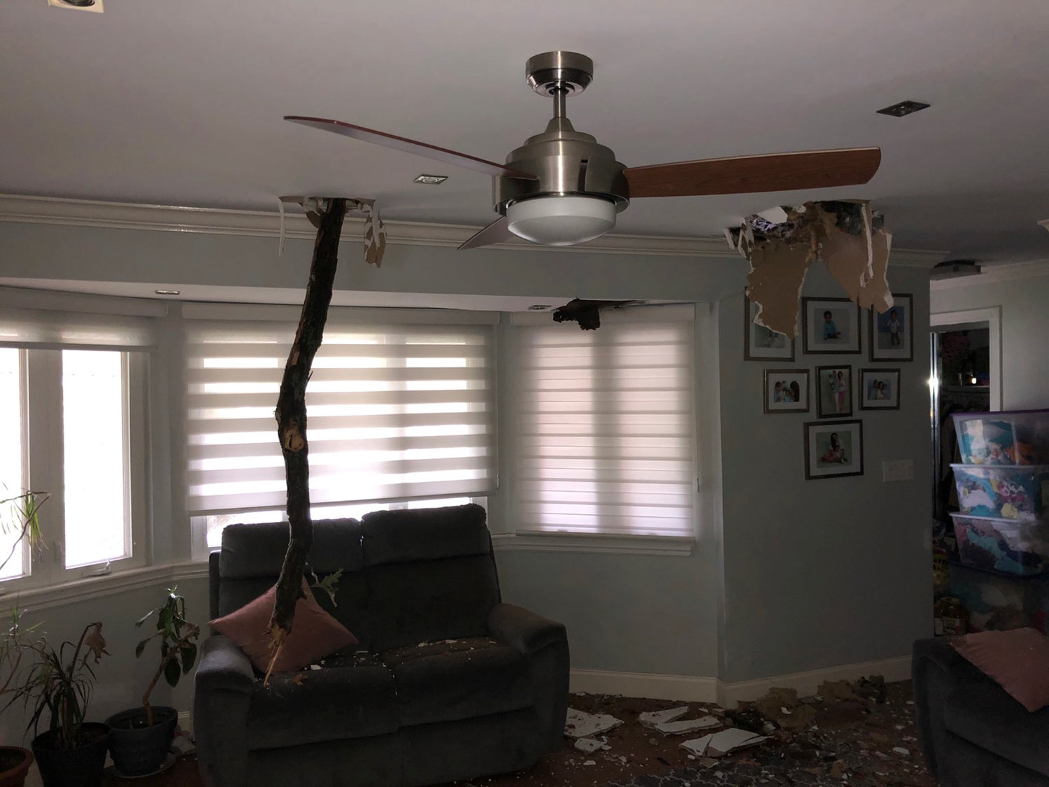The worst damage in Valley Stream likely occurred when part of a roughly 50-foot tree crashed through the roof of a Dogwood Street home.
