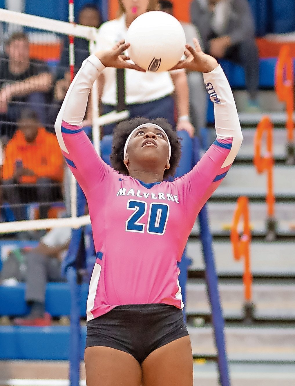 Malverne High School's Lady Mules volleyball team will have to wait until 2021 to defend their conference title.