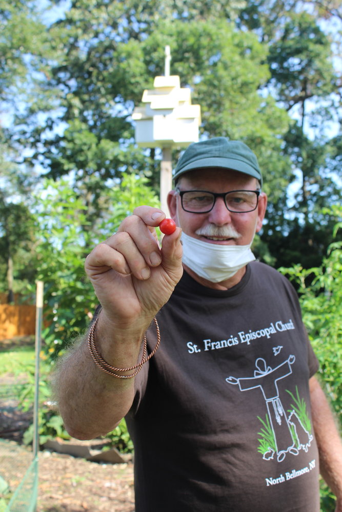 Garden manager Wade, of Amityville, plucked a cherry tomato from a sprawling vine. The fruit tasted fresh and sweet, like summer.