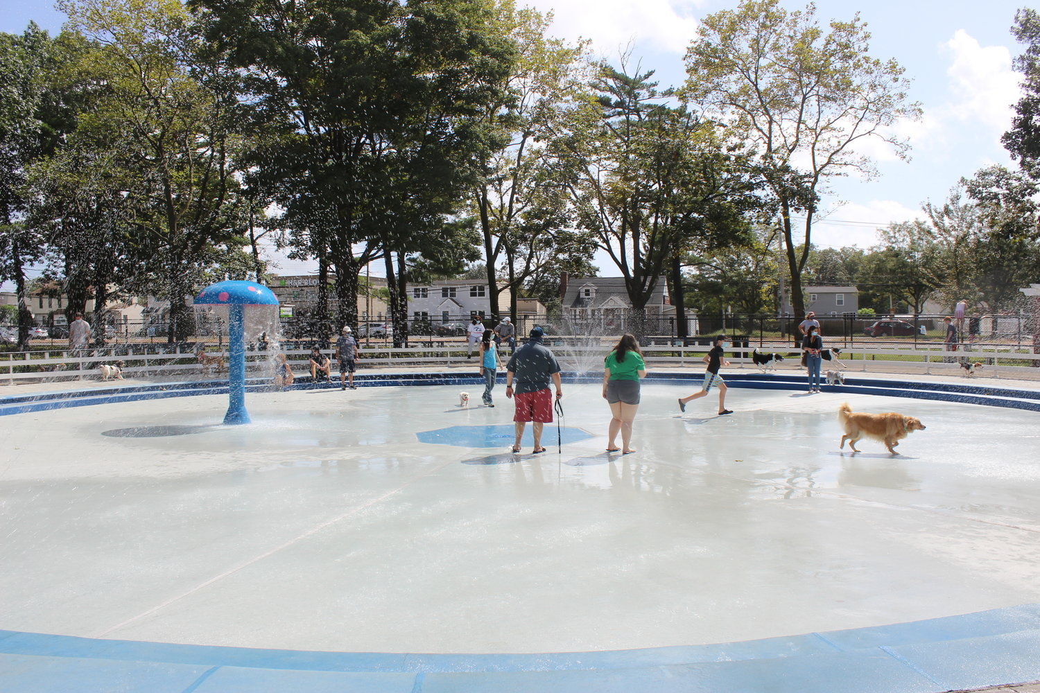 Dozens of dog owners visited the splash park in Eisenhower Park throughout the day.