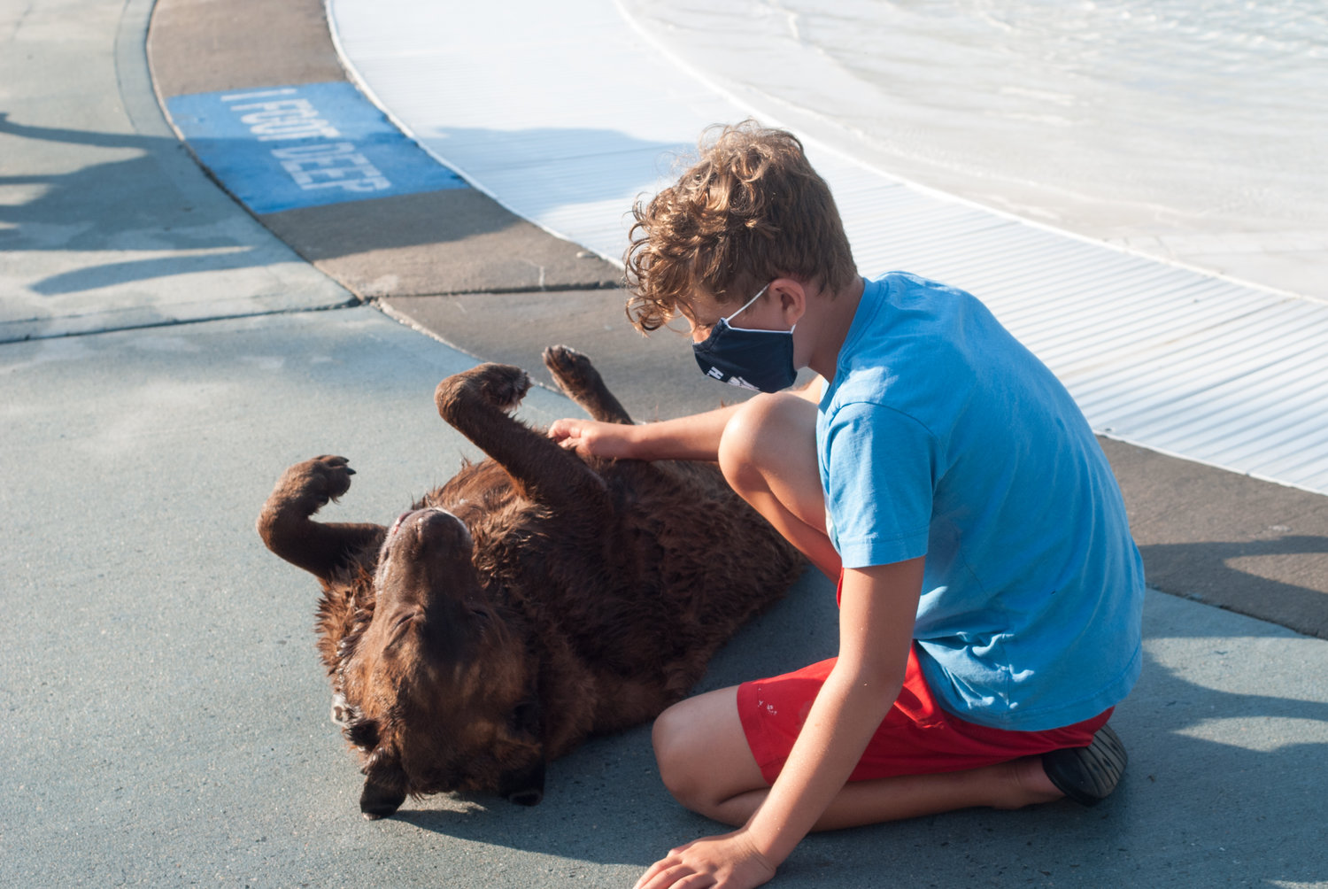 Levi Agamiem, 9, gives tummy rubs to Bella, a 10 and half year old chocolate lab at the Friends of Valley Stream Dogs annual Doggie Pool Party on Sept. 8 at the Hendrickson Park pool complex. Bella has been attending the parties since they began six years ago