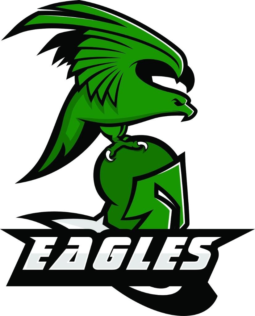 The EAGLES Alumni network was founded in 2016, and received board approval in 2017.