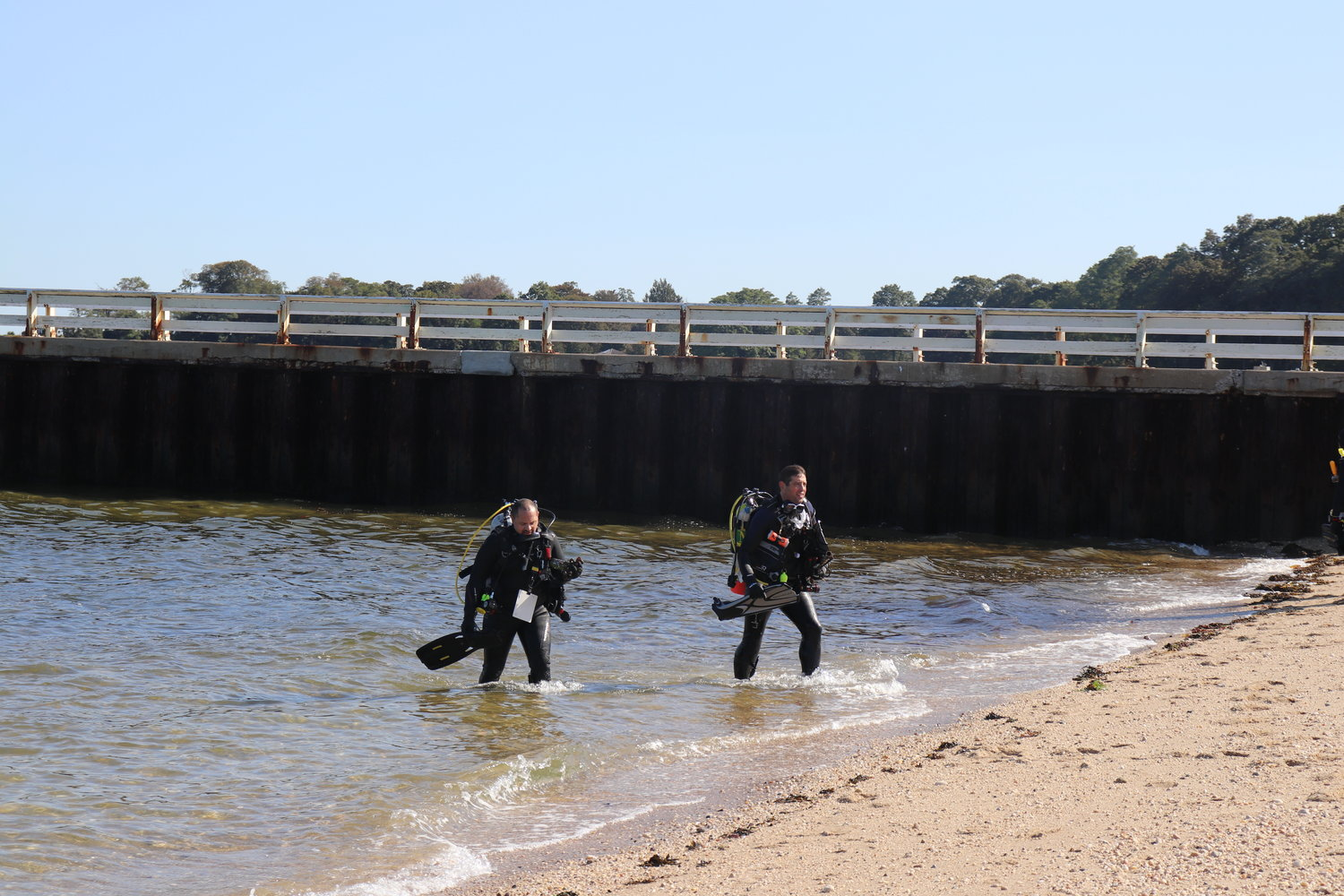 Divers from the Scuba Network made their way out of the Sound.