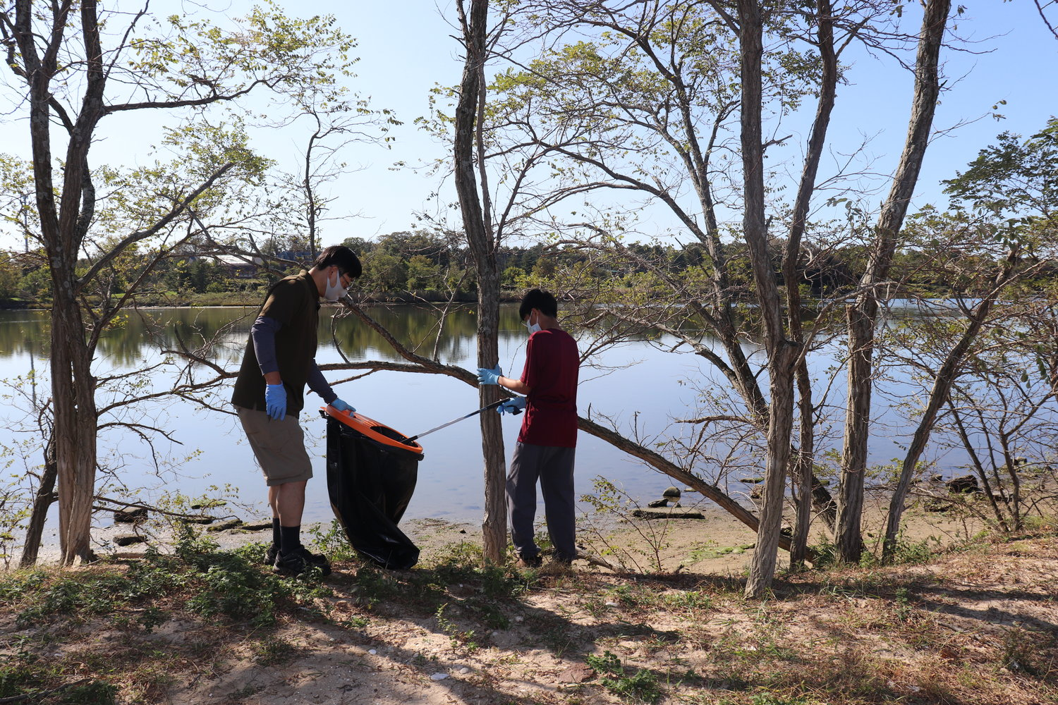 Volunteers worked among the trees as well as on the beach.