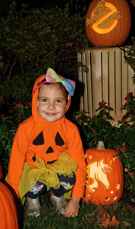 Crazy Pumpkin Lady Gets Lynbrook In The Halloween Spirit With Elaborate Jack O Lantern Display Herald Community Newspapers Www Liherald Com