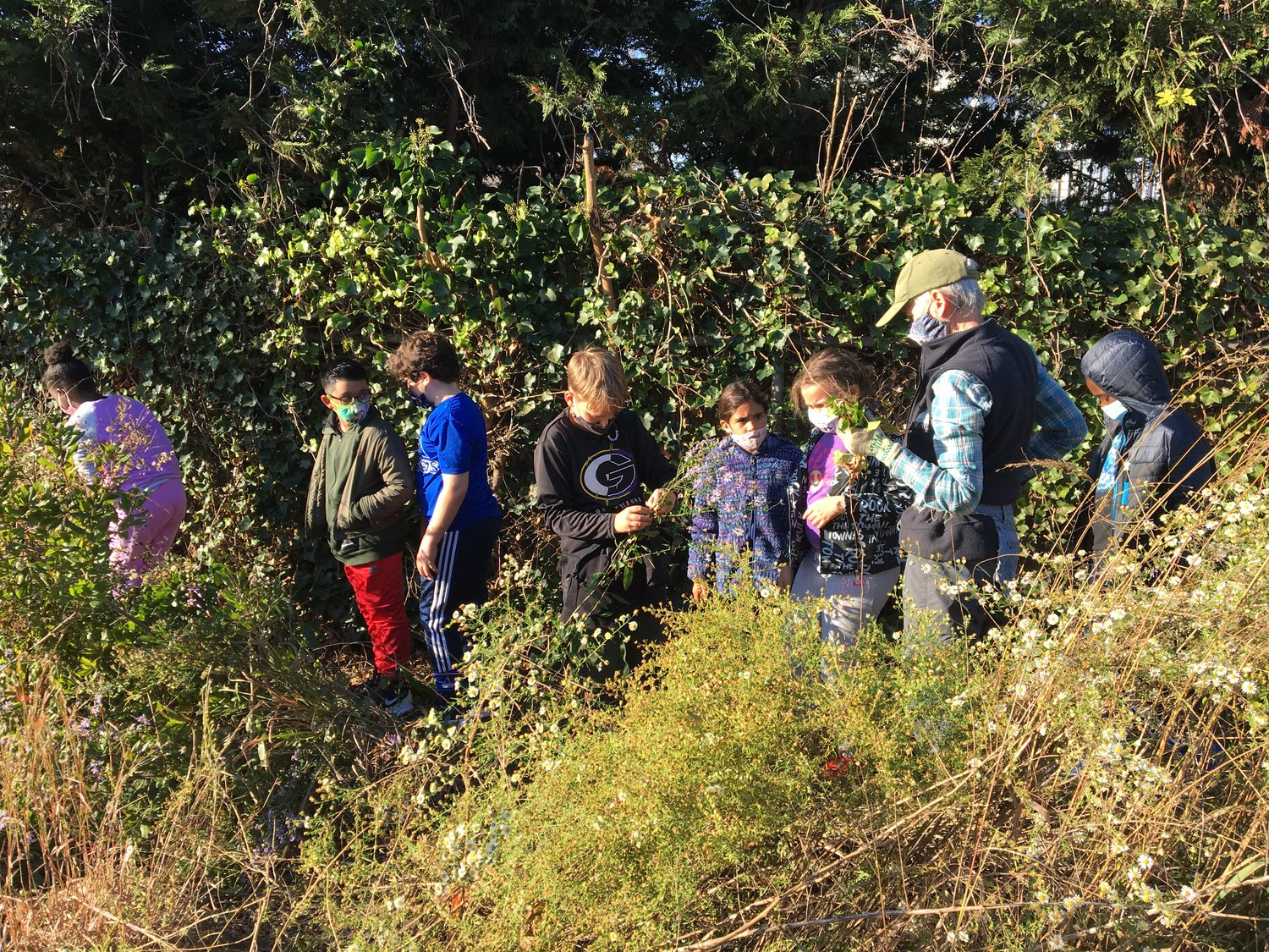Meadow Elementary School students tended to their school's garden as part of the science curriculum alongside botanist and designer Sue Avery last Friday.