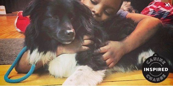 Kids learn patience, love and kindness through working and playing alongside dogs to boost self-esteem, emotional awareness, frustration tolerance and treating other people with respect. (Photo courtesy of Canine Inspired Change)