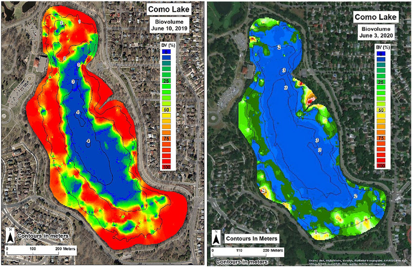 This biomass illustration, which compares 2019 (left) with 2020, shows the improvement in eliminating curly-leaf pondweed (which is red). (Courtesy of Capitol Region Watershed District)