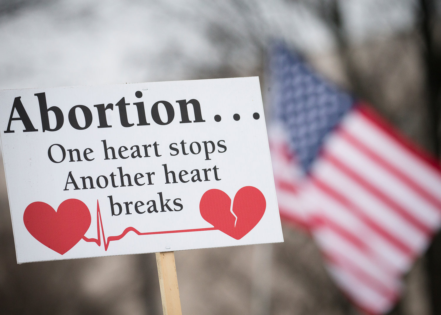 A pro-life sign is displayed during the 2019 annual March for Life rally in Washington Jan. 18. (CNS photo/Tyler Orsburn)