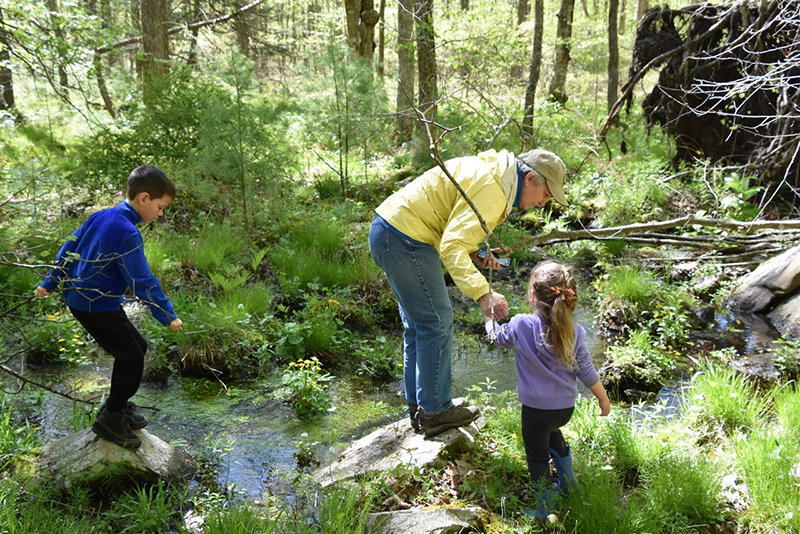 TRR photos by Sandy Long    A grandmother and her grandchildren explore the lowland area and its wetland, where we spotted amphibians, insects and a host of spring ephemeral wildflowers and ferns.