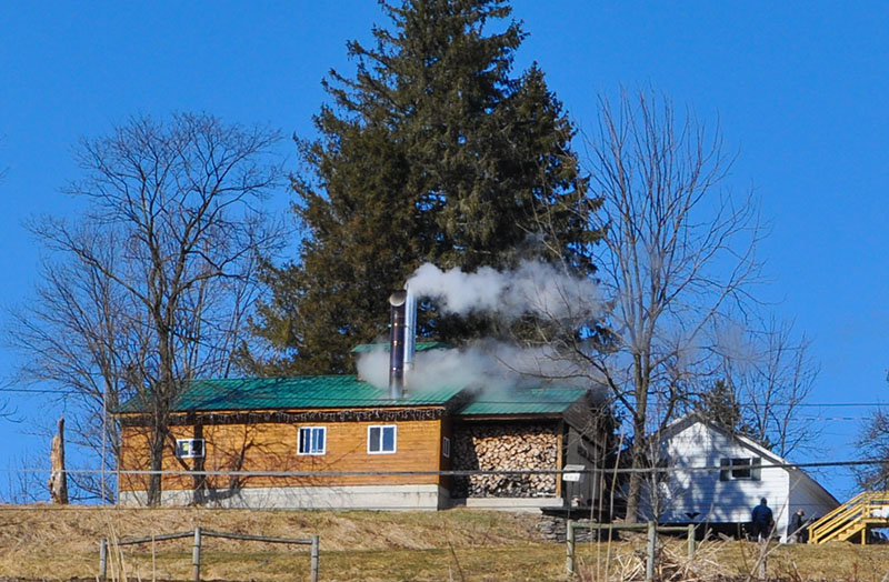 TRR photos by Jonathan Charles Fox    See the plumes of steam rising from the sugar shack at the Diehl Homestead Farm? That's why you don't make maple syrup in your kitchen.