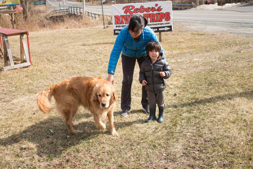 Katy Czapnik tries to wrangle a playful group: her son Kai and their dog Hunter just off of Route 97 in Barryville.