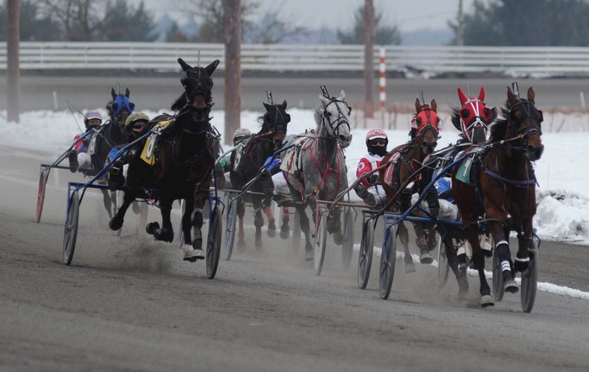 "And they're off! Pictured is the start of the third race, a one-mile pace, with a purse of $5,600 at ""The Mighty M"" on January 12, 2021."