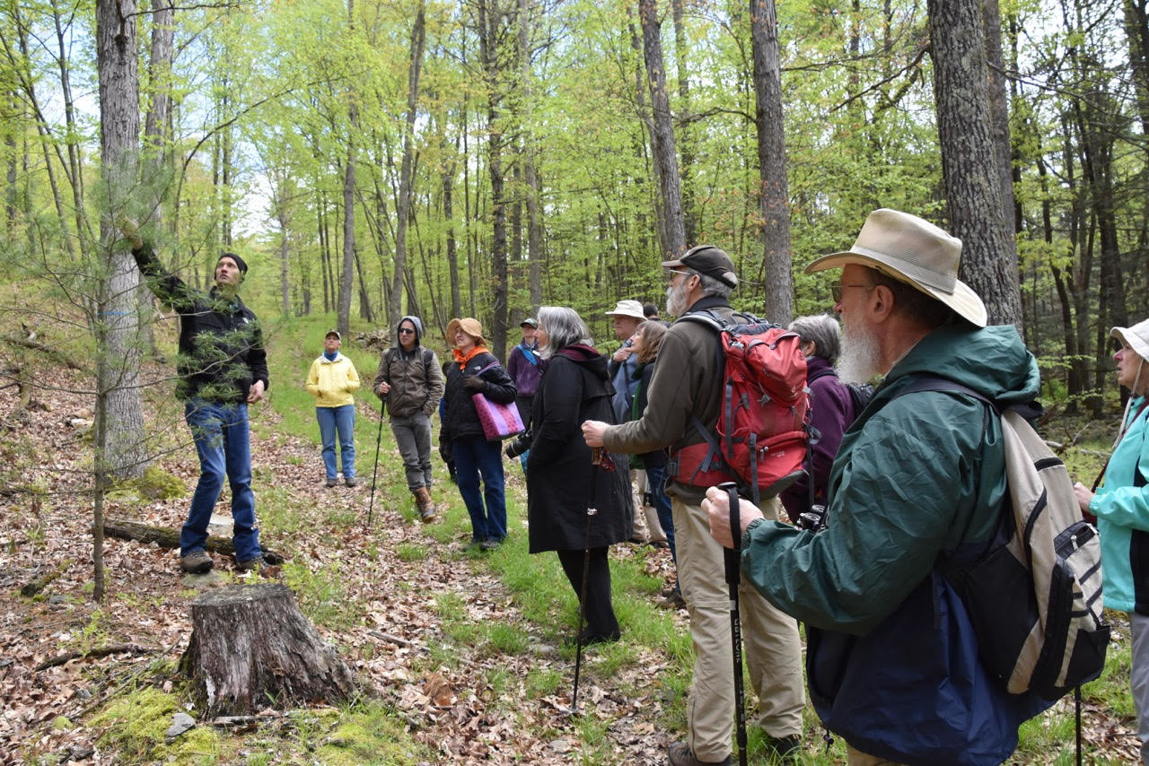 Participants learned how to estimate the age of a white pine from Garrett Beers of the PA Department of Conservation and Natural Resources.