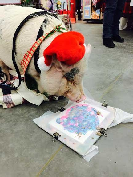 TRR file photo by Sandy Long