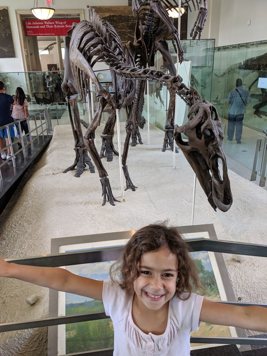 Sullivan County children attended a free trip to the American Museum of Natural History in New York City on July 6 thanks to Nana's House Child Care Center in Rock Hill.