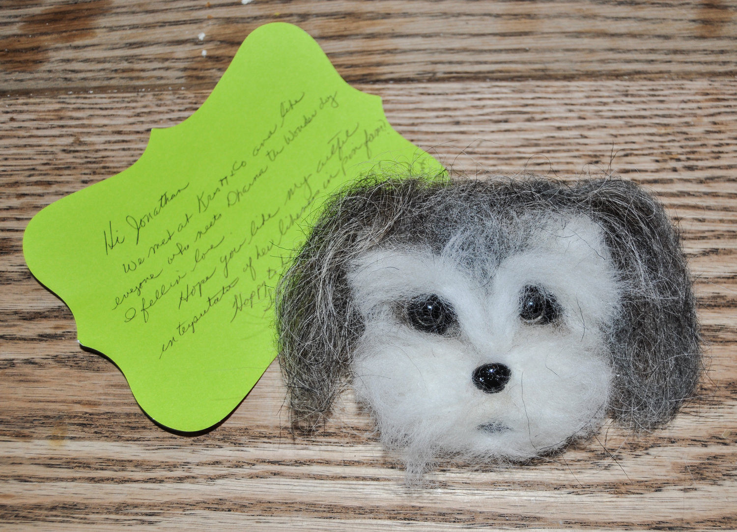 Elinor Dandrea's incredibly detailed needle-felted interpretation of Dharma the Wonder Dog's adorable face arrived unexpectedly, lifting my spirits and giving me hope amidst the bleak landscape of COVID-19. Thanks, Elinor!