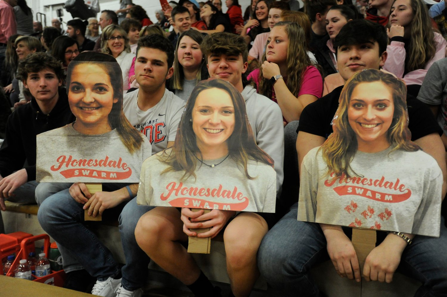 The home-team fans turned out in a 'swarm' on senior night to honor the Lady Hornets.