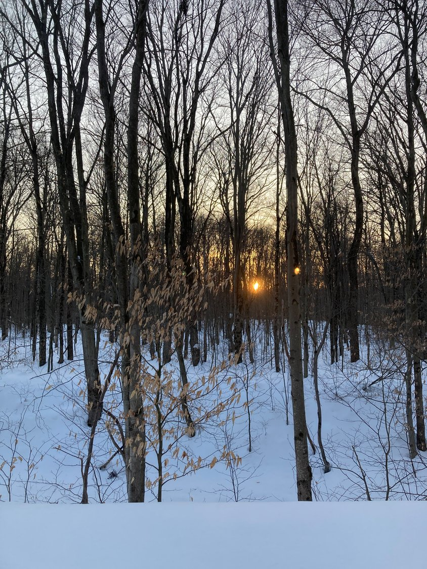 Adventure outdoors at dusk to experience the golden glow of a winter sunset...