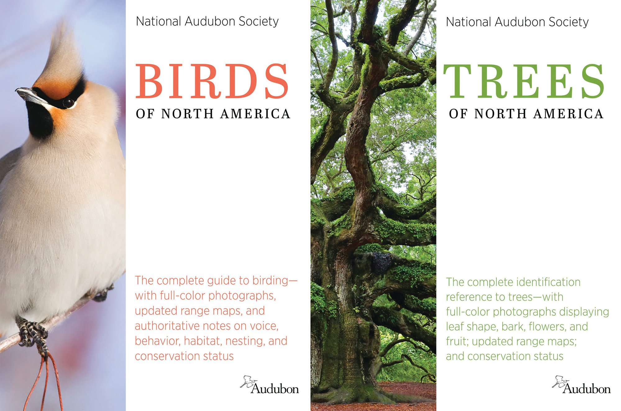 "KNOPF VIA THE ASSOCIATED PRESSThis combination of cover images shows ""Birds of North America,"" left, and ""Trees of North America"" by the National Audubon Society."