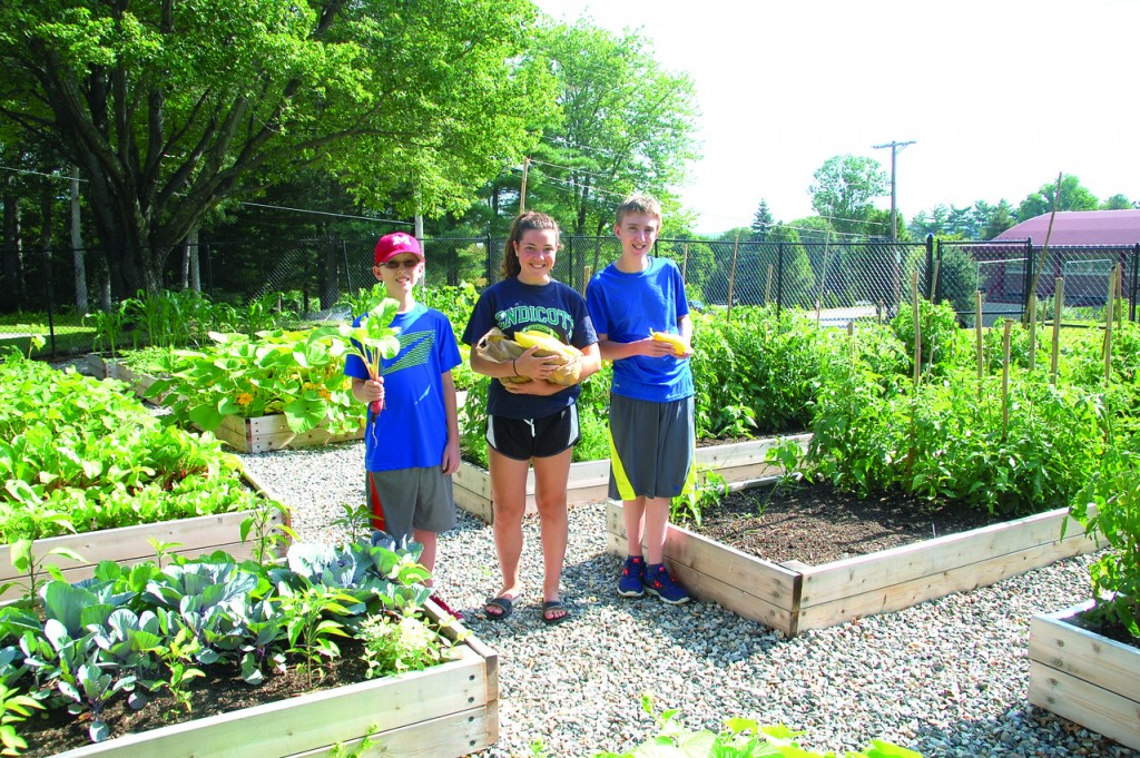 GENEROSITY GROWS AT MOUNT: Mount Saint Charles students Jake Henschel, Claire Albright and Kyle Henschel harvest some crops from the Academy's garden which not only serves as an outdoor classroom, but will provide fruits and vegetables for local food pantries this year.